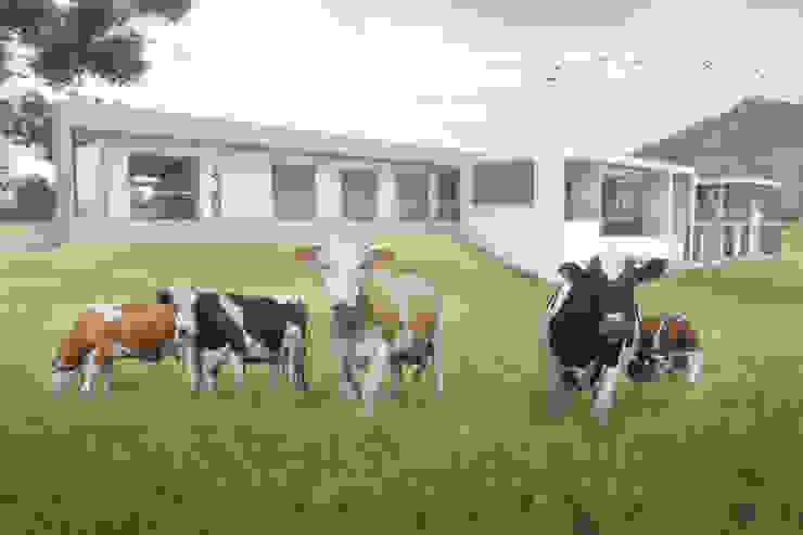 Fachada Posterior Casas de estilo minimalista de Ar4 Arquitectos Minimalista