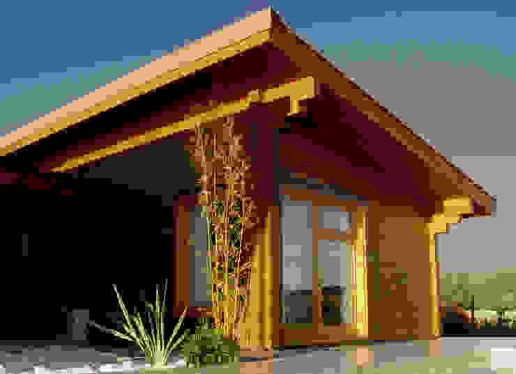 บ้านและที่อยู่อาศัย โดย MIGUEL VISEU COELHO ARQUITECTOS ASSOCIADOS LDA,
