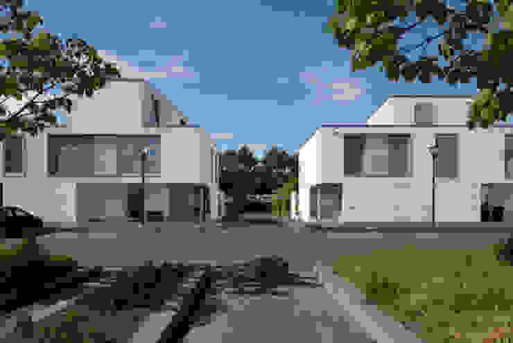 bospatio's Moderne huizen van JMW architecten Modern