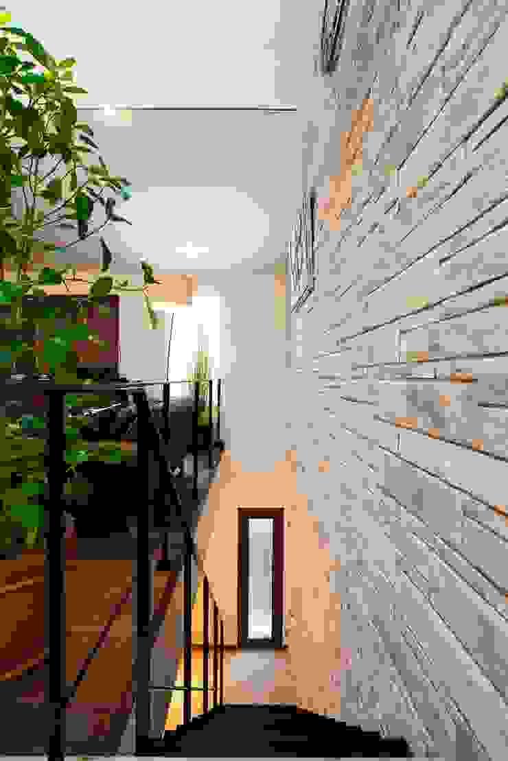 階段 モダンスタイルの 玄関&廊下&階段 の QUALIA モダン