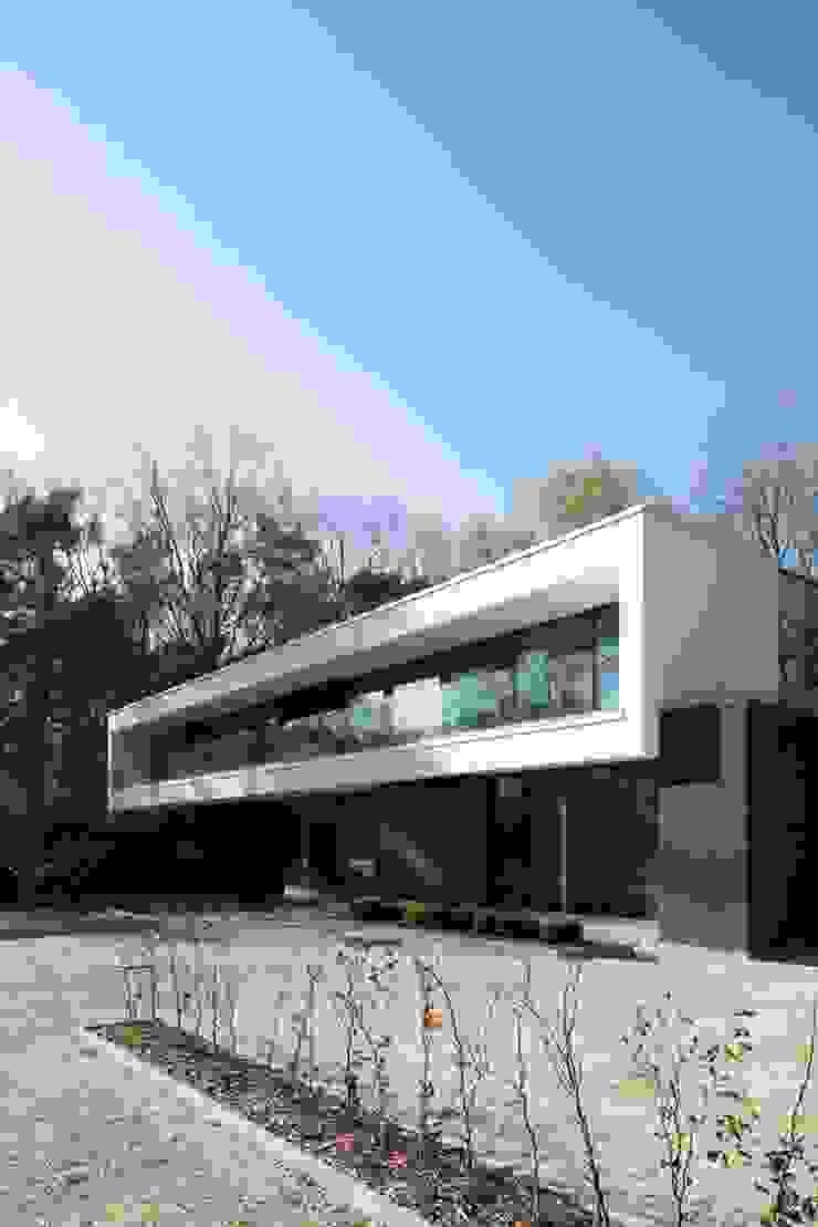 Modern houses by De Plankerij BVBA Modern