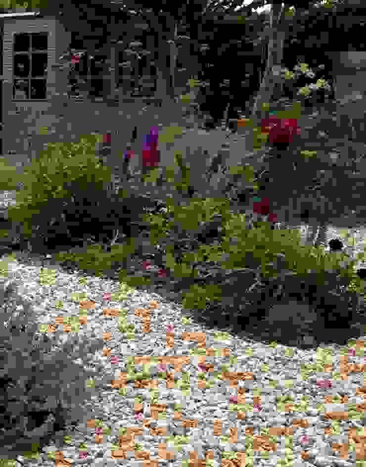 Planted beds Cornus Garden Design Modern Garden
