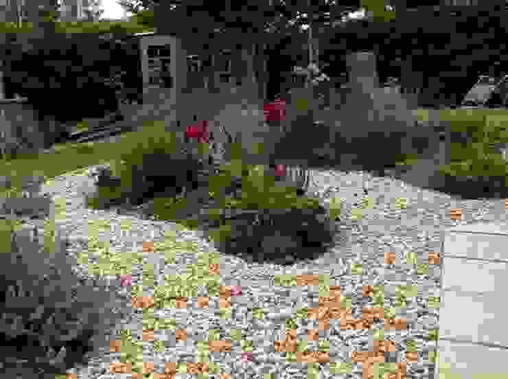 See through planting Moderner Garten von Cornus Garden Design Modern