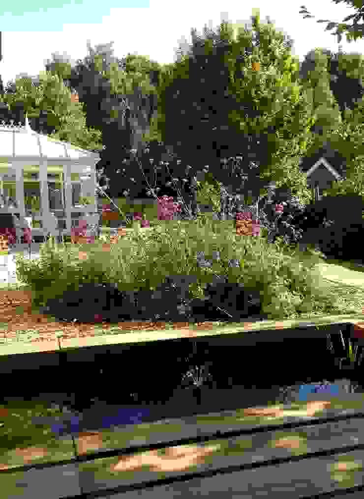 New Deck and Pool Cornus Garden Design Modern terrace Wood