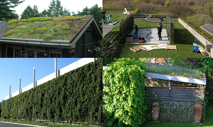 Tetto verde e giardino pensile Giardino in stile mediterraneo di Dotto Francesco consulting Green Mediterraneo