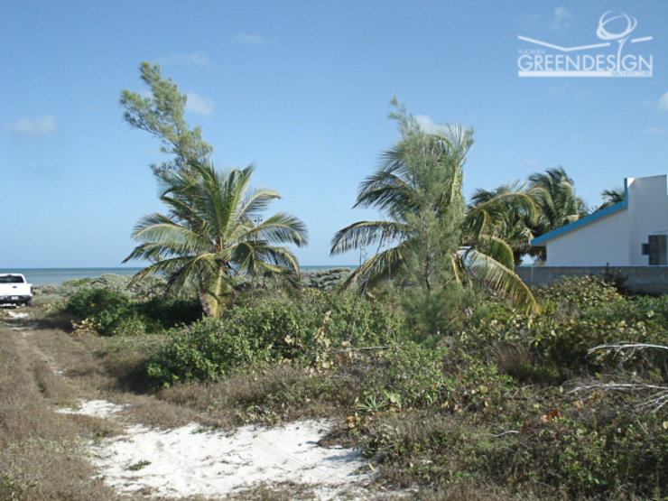 Terreno natural Jardines de estilo tropical de Yucatan Green Design Tropical