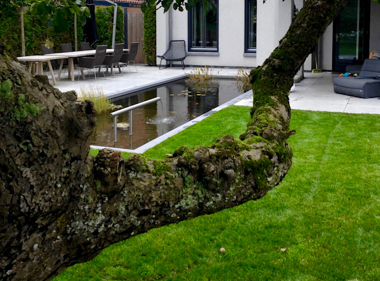 Moderne tuin met vijver en waterspel Moderne tuinen van Stoop Tuinen Modern
