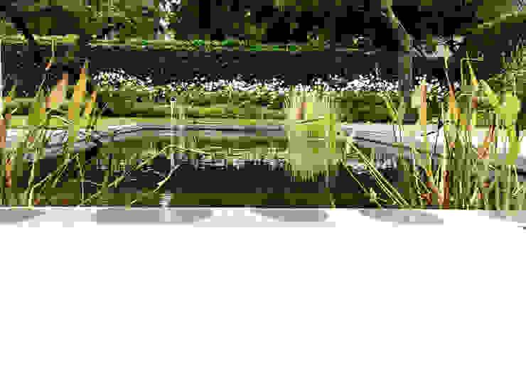 Strakke vijver met waterspel Moderne tuinen van Stoop Tuinen Modern