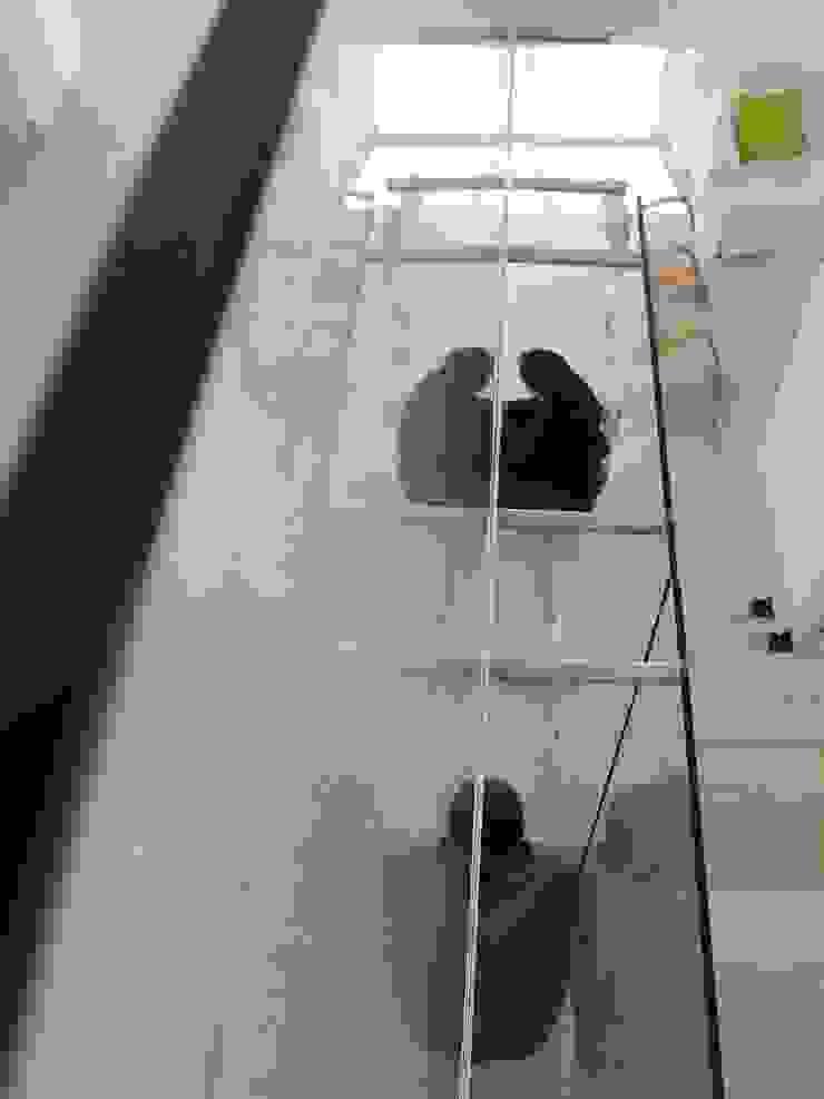Casa Guinter Balcones y terrazas modernos: Ideas, imágenes y decoración de Estudio d360 Moderno