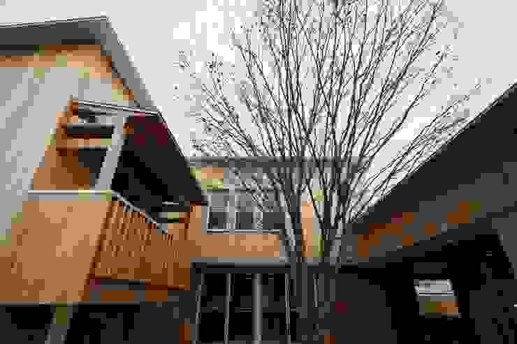 中庭とヤマボウシ モダンな 家 の TOGODESIGN モダン 無垢材 多色