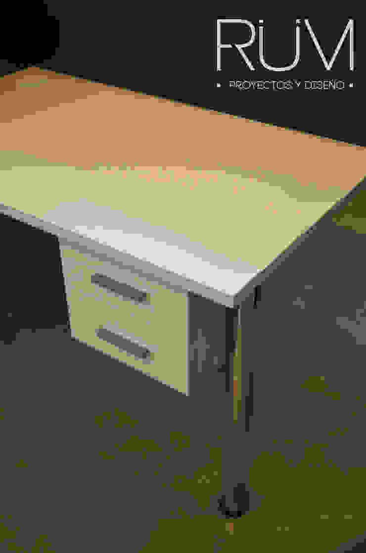 RÜM Proyectos y Diseño Office spaces & stores