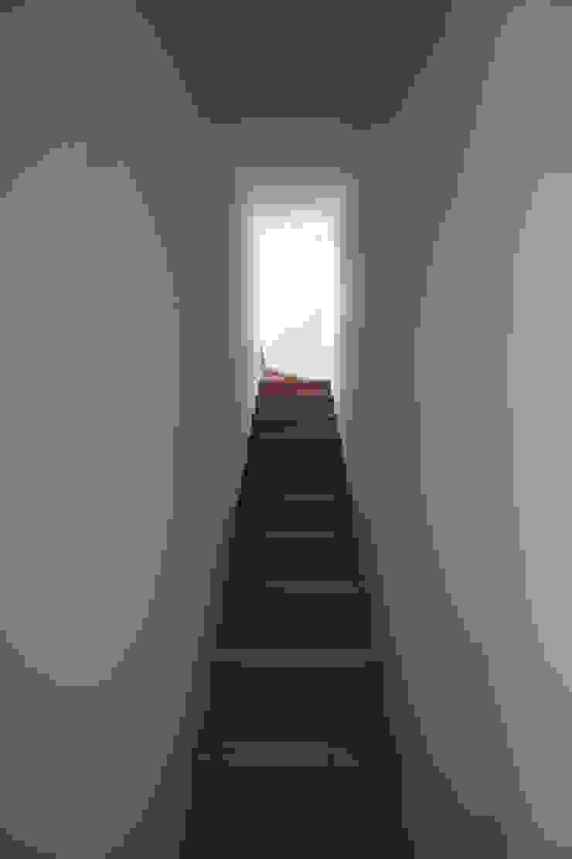 階段 モダンスタイルの 玄関&廊下&階段 の 東章司建築研究所 モダン 無垢材 多色