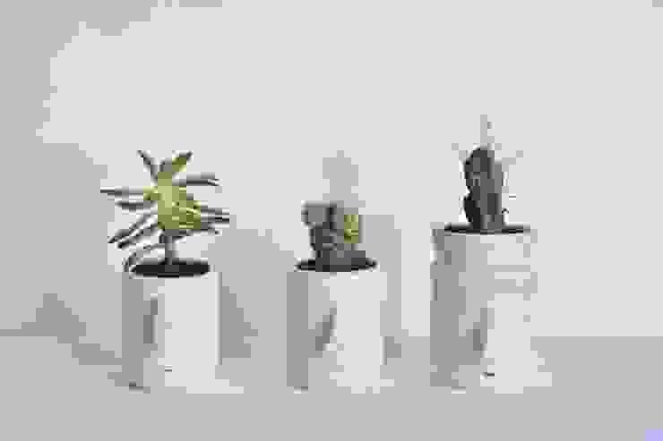 de Pompilio Plants Moderno