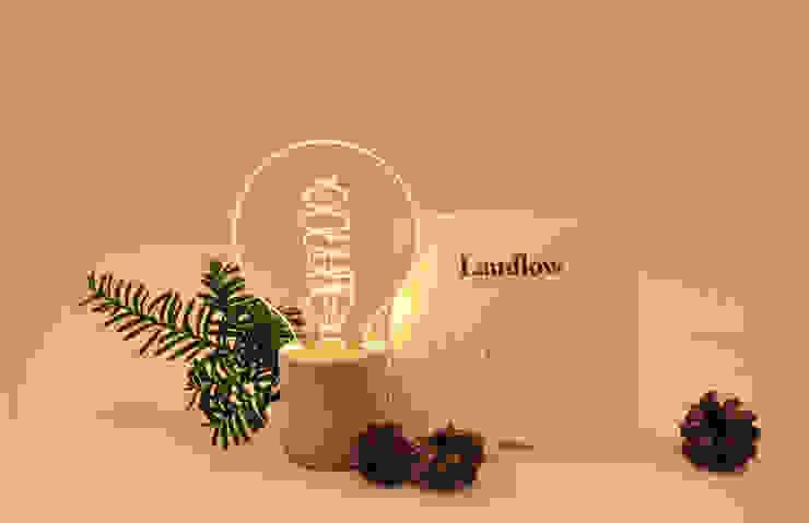 램플로우 글로브: 마이너스원 (MINUS1)의 현대 ,모던