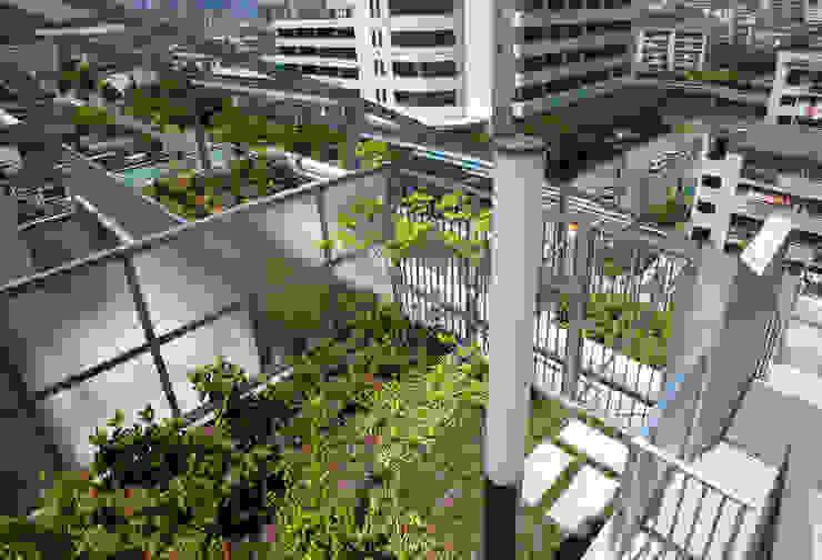 緑の環境の集合住宅2 モダンデザインの テラス の ユミラ建築設計室 モダン
