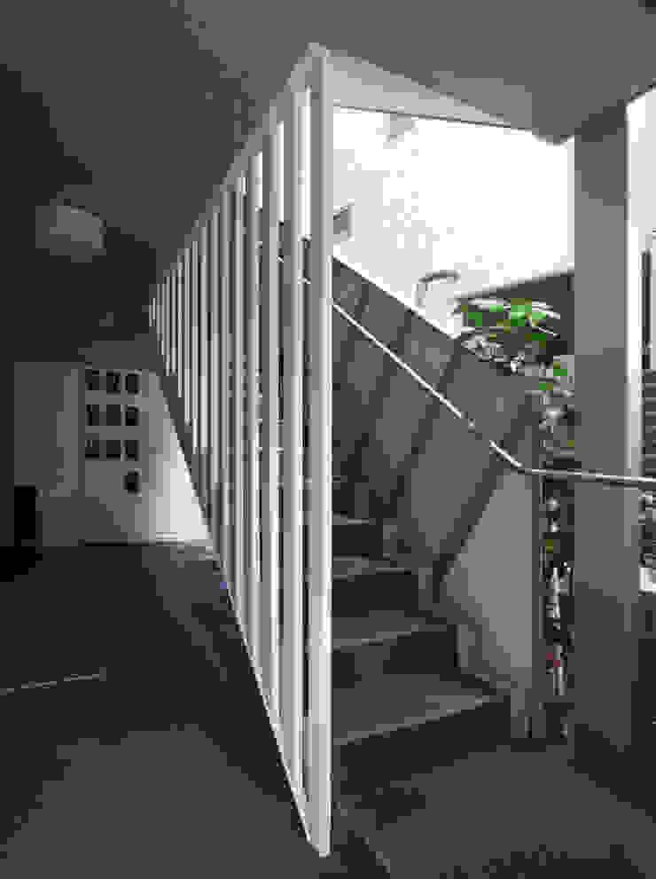 下北沢の賃貸マンション モダンスタイルの 玄関&廊下&階段 の ユミラ建築設計室 モダン