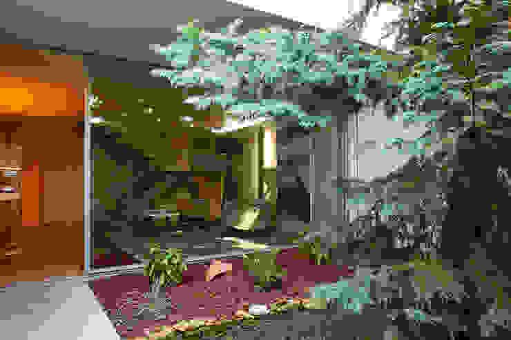 Moderne gangen, hallen & trappenhuizen van Susana Camelo Modern