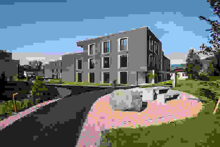 Giesser Architektur + Planung Casas modernas: Ideas, imágenes y decoración Madera Ámbar/Dorado