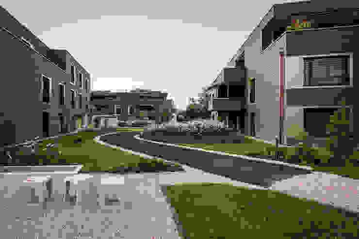 Giesser Architektur + Planung Jardines modernos: Ideas, imágenes y decoración Madera Ámbar/Dorado