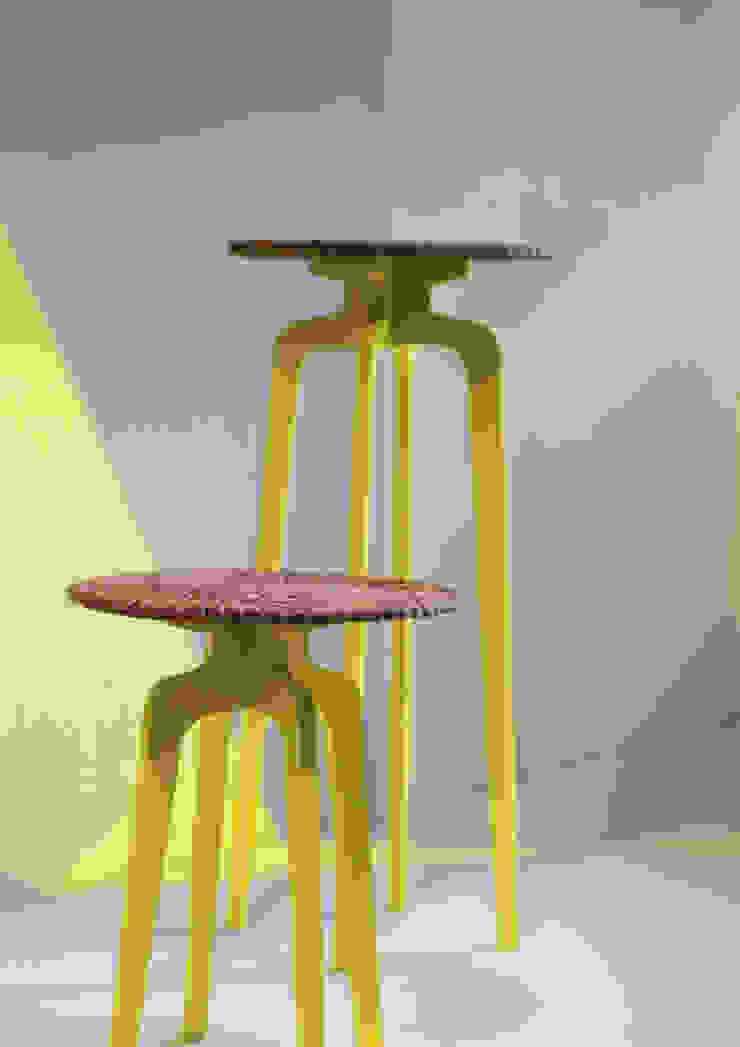 Tomasa de Rodolfo Agrella Design Studio Clásico