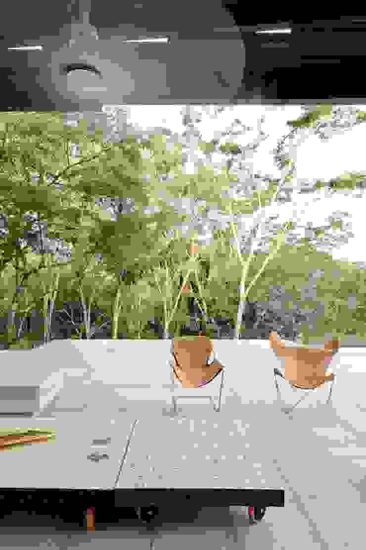 Casa Pombo Balcones y terrazas de estilo moderno de PLUS Arquitectura y Diseño Ltda. Moderno