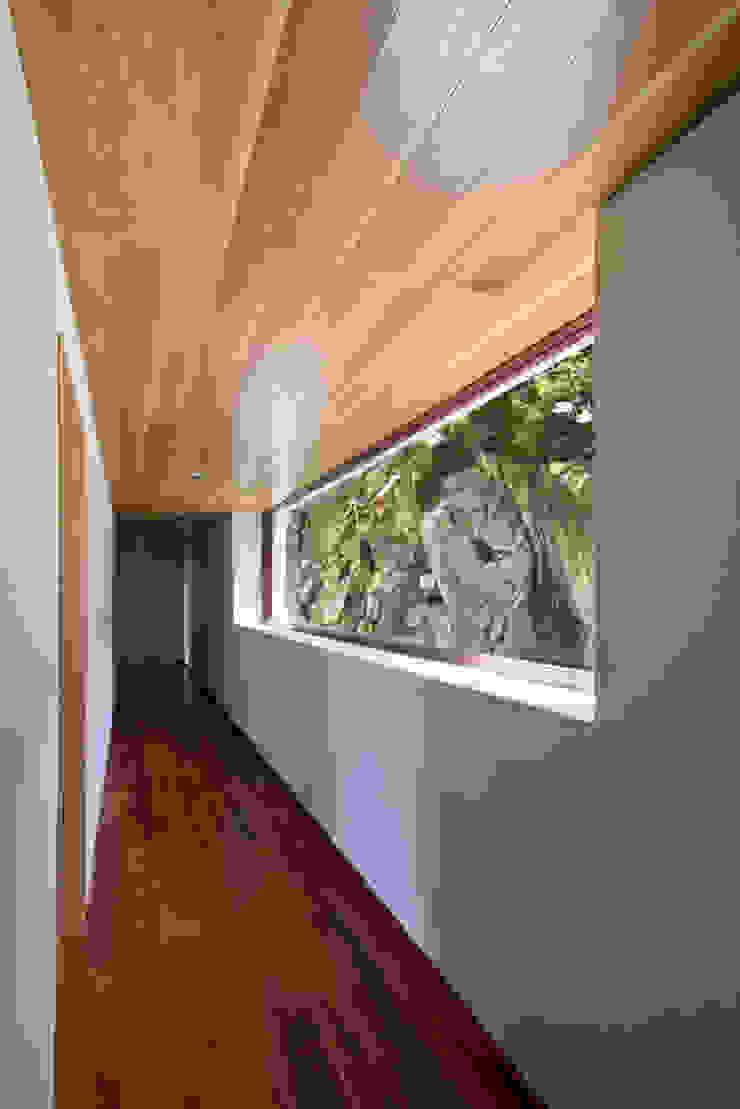 La casa en el bosque Pasillos, vestíbulos y escaleras modernos de EMA Espacio Multicultural de Arquitectura Moderno