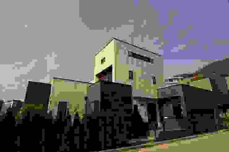 Patio House 모던스타일 주택 by 구도건축사사무소 모던