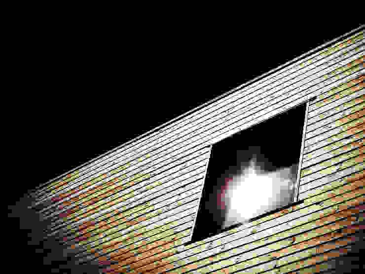 Casas modernas de TRIBU ARCHITECTES Moderno