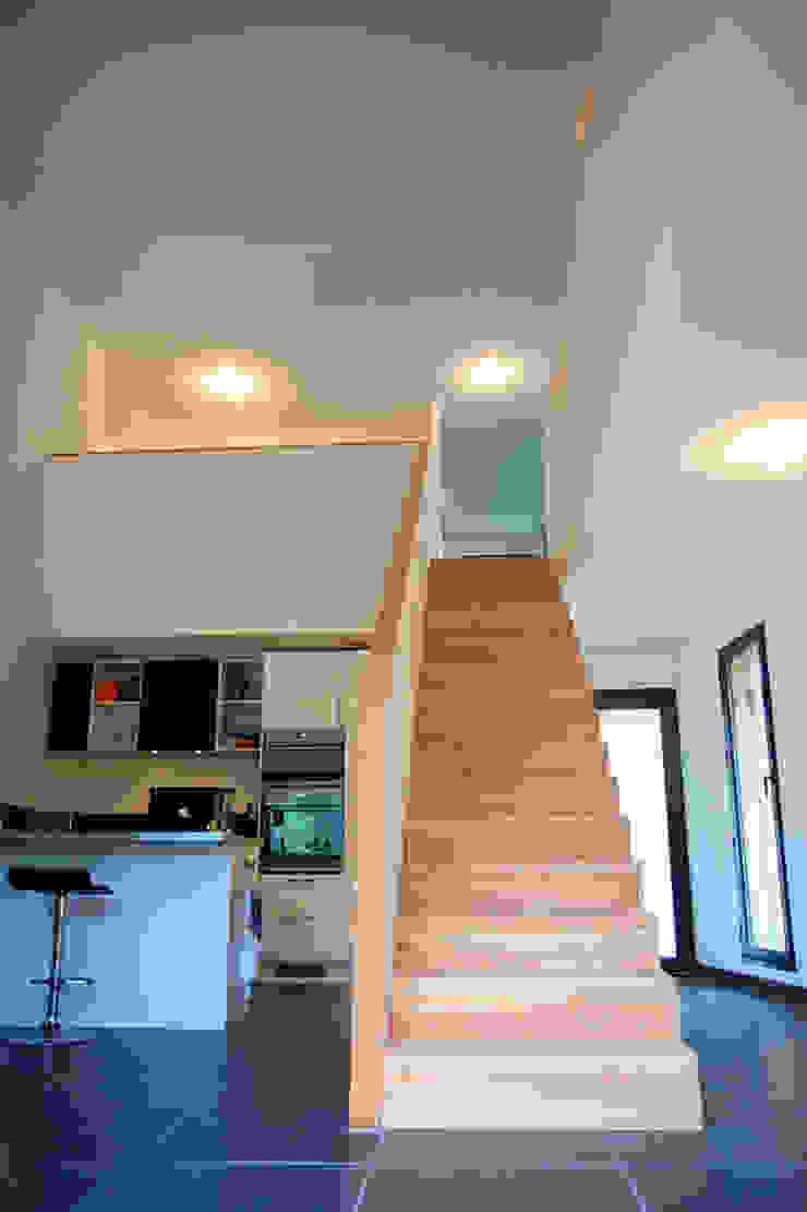 Pasillos, vestíbulos y escaleras de estilo moderno de TRIBU ARCHITECTES Moderno
