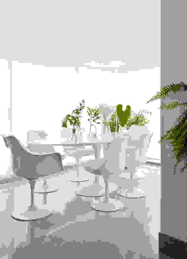 Comedores modernos de INÁ Arquitetura Moderno