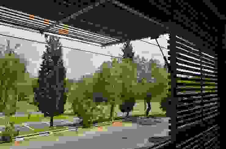 Uspallata 460: Terrazas de estilo  por trama arquitectura,Moderno