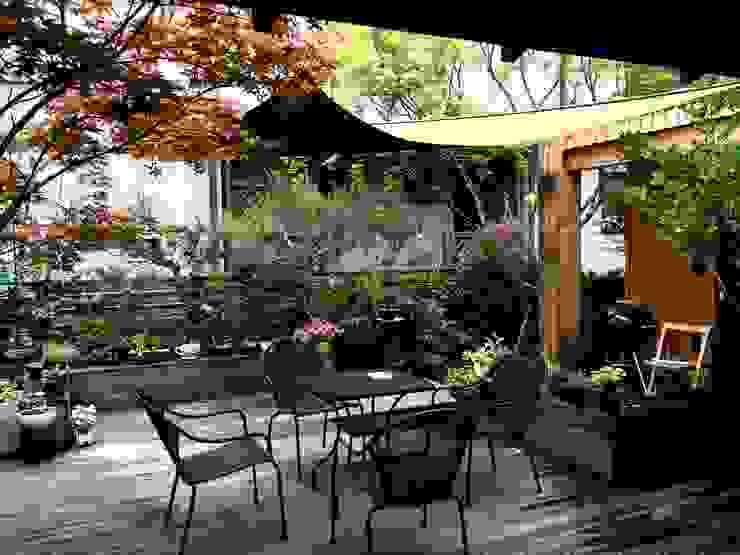 庭院 by homify, 現代風