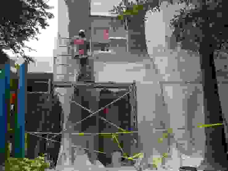PROCESO DE CONSTRUCCION Escuelas de estilo rústico de DISEÑO PROYECTOS Y CONSTRUCCION Rústico Concreto reforzado