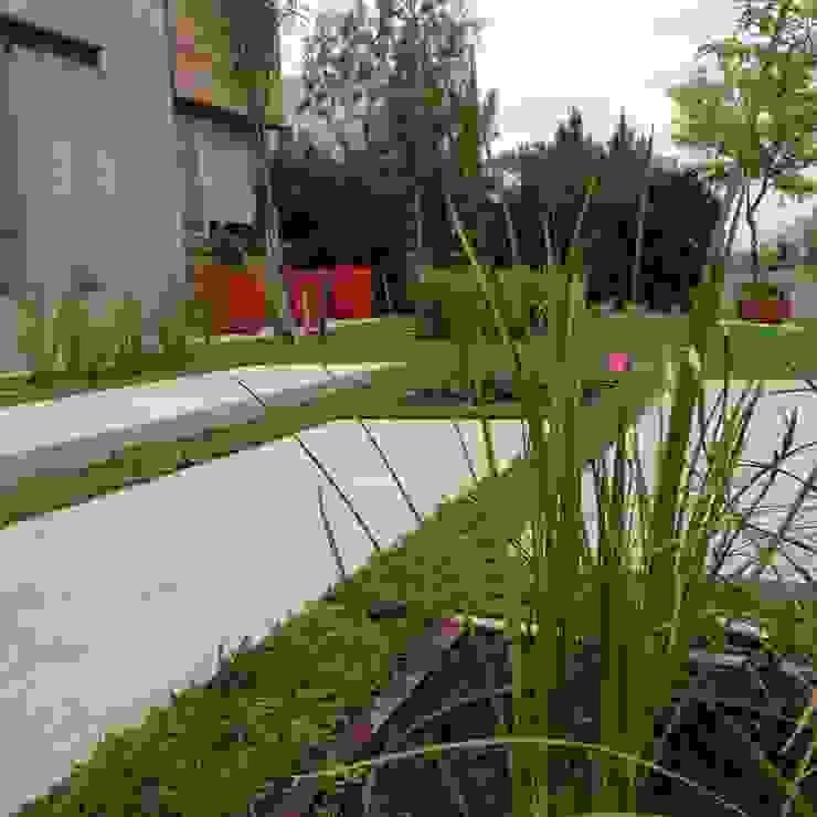 MODERN RED Jardines modernos: Ideas, imágenes y decoración de BAIRES GREEN Moderno