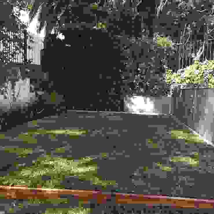 pequeños espacios Jardines modernos: Ideas, imágenes y decoración de BAIRES GREEN Moderno