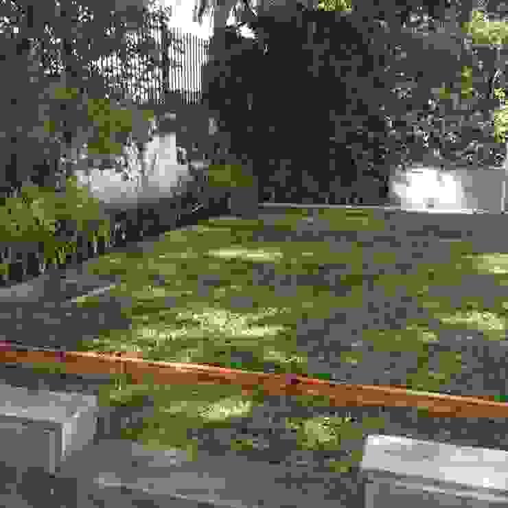 PEQUEÑOS JARDINES. lindas vistas.. Jardines modernos: Ideas, imágenes y decoración de BAIRES GREEN Moderno