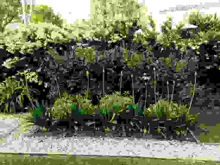 BAIRES GREEN의  정원,