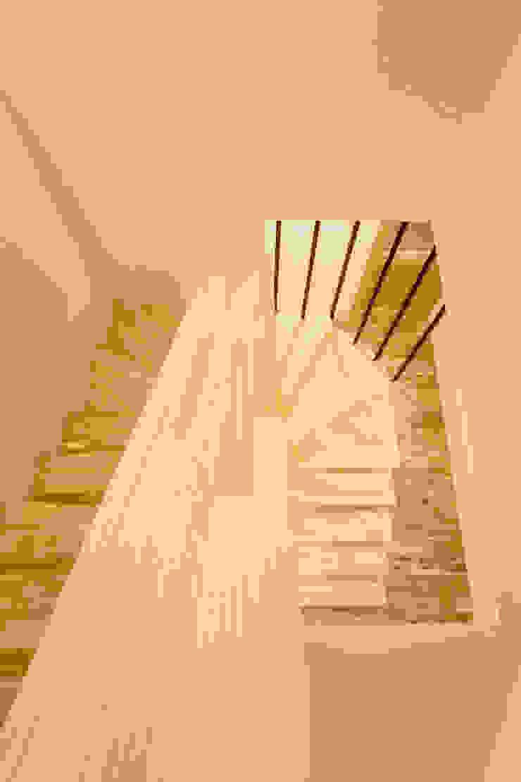松原の家。 モダンスタイルの 玄関&廊下&階段 の 株式会社ルティロワ 一級建築士事務所 モダン