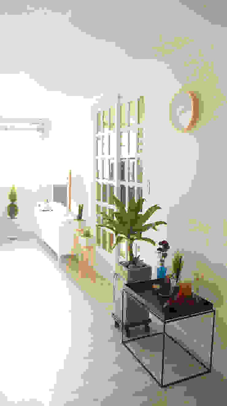 toki Scandinavian style windows & doors