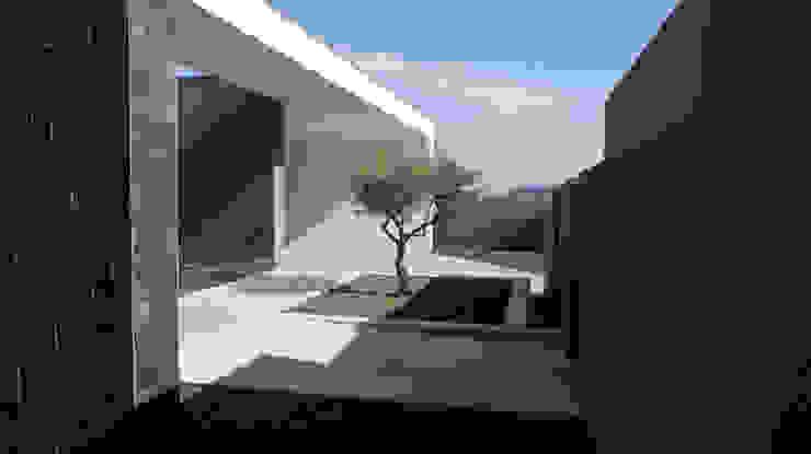 Casa Miradouro Casas modernas por Miguel Zarcos Palma Moderno