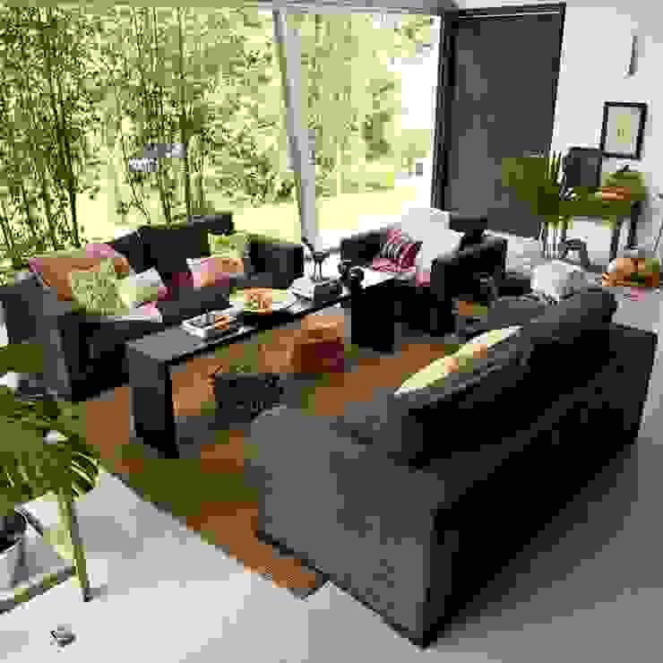 solrodriguez75 Livings de estilo moderno