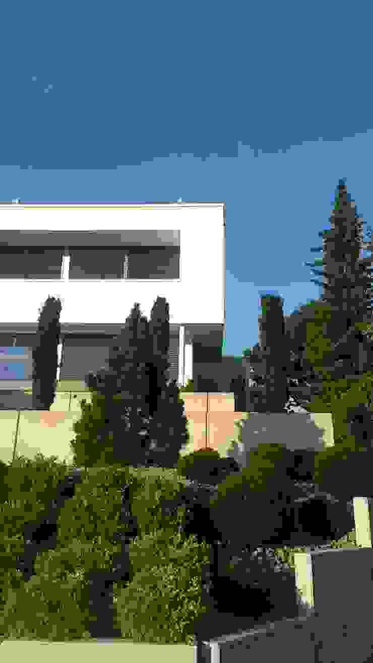 Vườn phong cách hiện đại bởi Diemer Architekten Part. mbB Hiện đại