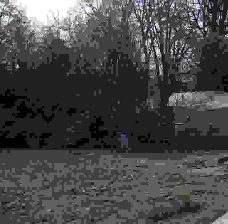 Ecologic City Garden - Paul Marie Creation:  tarz Bahçe