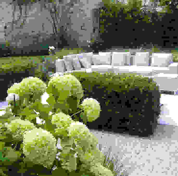 Jardin moderne par homify Moderne