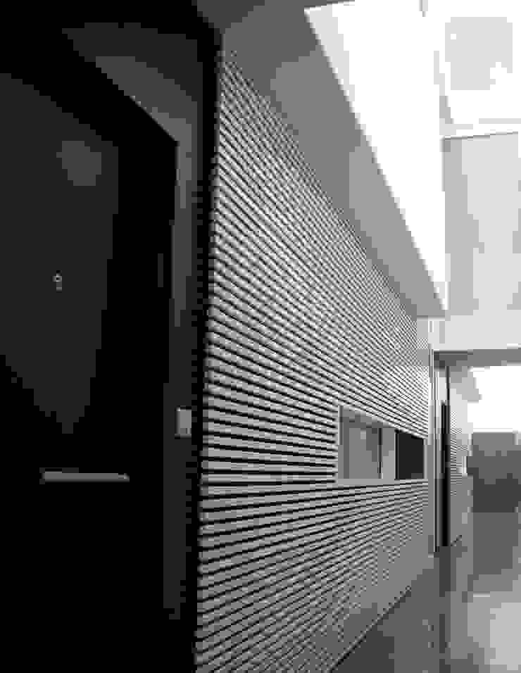 Acceso interior a las viviendas Pasillos, vestíbulos y escaleras modernos de asieracuriola arquitectos en San Sebastian Moderno Derivados de madera Transparente