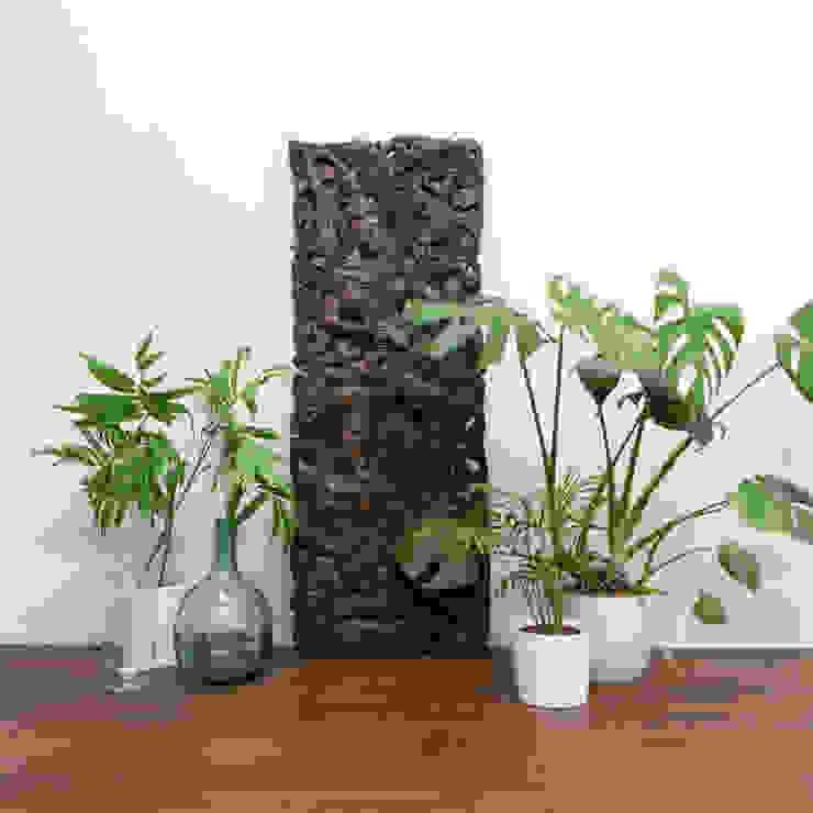 tropical  by Narai Decor, Tropical