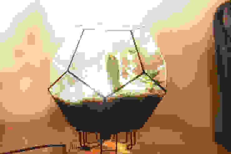 Terrarium Lighting Pil Tasarım Mimarlik + Peyzaj Mimarligi + Ic Mimarlik HouseholdPlants & accessories Glass Transparent