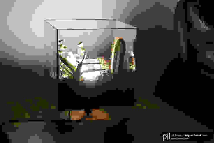 Terrarium Lighting od Pil Tasarım Mimarlik + Peyzaj Mimarligi + Ic Mimarlik Nowoczesny Szkło