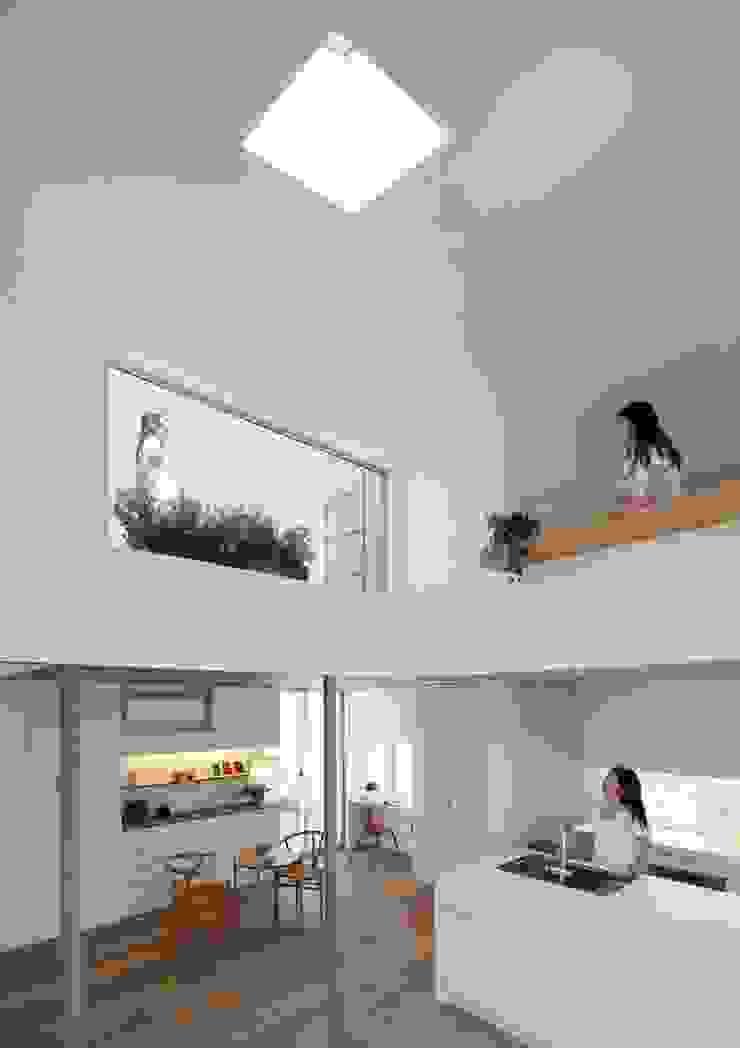 等々力の家 モダンデザインの リビング の アトリエ スピノザ モダン