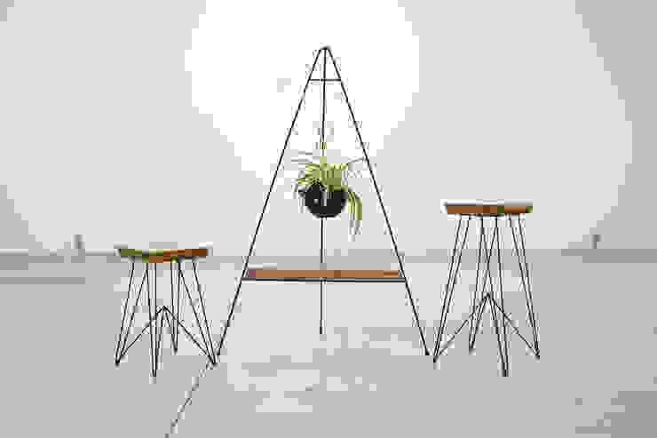 Jardines de estilo minimalista de The Curious Minimalista